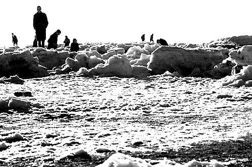 de bevroren Noordzee